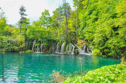 Photo sur Aluminium Vert chaux Beautiful Plitvice Lakes National Park in Croatia during the summer. Waterfalls and lakes complete this lush wonderland.