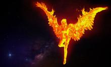 Phoenix Girl Flying In Space