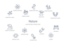 Nature Concept 14 Outline Icons
