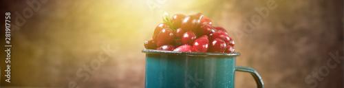 Fényképezés Ripe red cornel berries in small glass jar