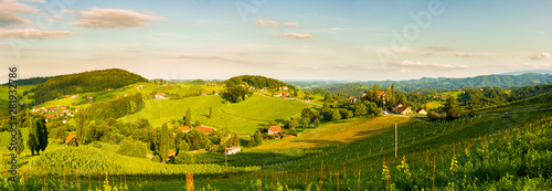 Cadres-photo bureau Beige Grape hills and mountains view from wine street in Styria, Austria ( Sulztal Weinstrasse ) in summer.