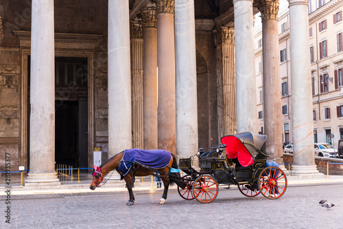 Fototapety, obrazy: Horse carriage for tourists at the Pantheon temple in Rome, Italy