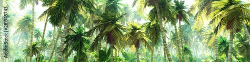 Obrazy dżungla   jungle-in-the-morning-in-the-fog-palm-trees-in-the-haze-3d-rendering