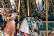 Country Fair Midway Carousel Ride Features A Variety Of Different Horses And Reindeer Mounts To Ride.