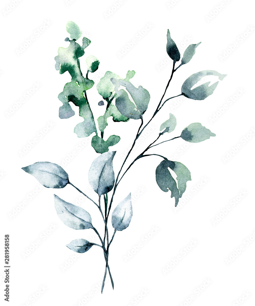 Fototapety, obrazy: Watercolor branch with green leaves. Hand painting floral illustration. Leaf, plant isolated on white background.