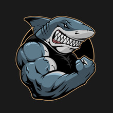 Angry Shark Logo Template Illustration