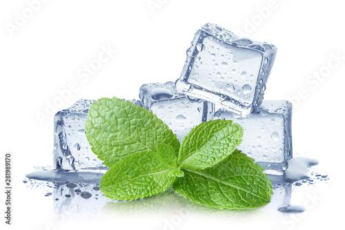 Obraz Ice cubes and fresh mint leaves, isolated on white background - fototapety do salonu