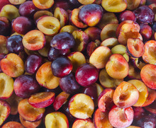 Halves Of Ripe Plum Fruit