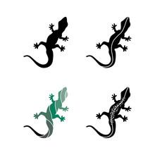 Lizard Vector, Design, Animal,...