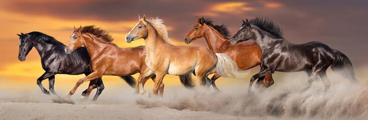 Panel Szklany Popularne Horse herd run gallop in desert dust against dramatic sky