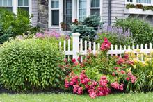 Flowers In Garden In Front Of House