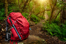 Red Backpack And Hiking Gear S...