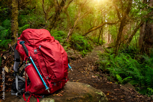 Photo Red backpack and hiking gear set placed on rock in rainforest of Tasmania, Australia