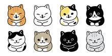 Cat Vector Kitten Breed Calico Icon Logo Symbol Cartoon Character Doodle Illustration Design