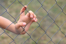 Child's Hand Behind A Metal Bars. Infringement Of The Rights Of Children