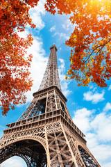 Fototapeta Popularne Eiffel Tower against the blue sky and autumn trees in Paris, France. Famous travel destination