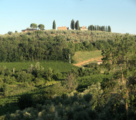 Fototapeta na wymiar Hillside settlement in the agricultural landscape of Tuscany near Florence