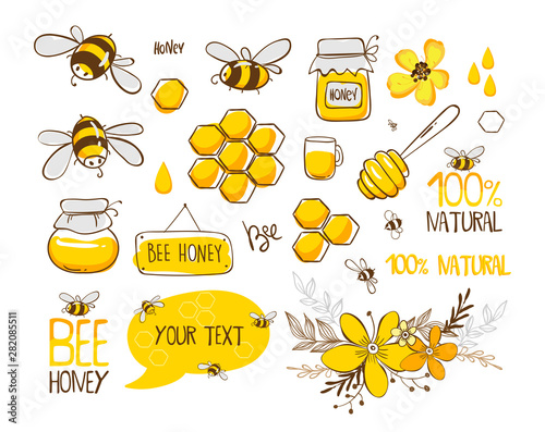 Set of bee, honey, lettering and other beekeeping illustration Canvas Print