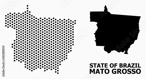 Foto  Dot Pattern Map of Mato Grosso State