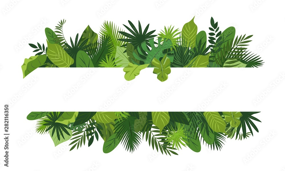 Fototapeta Tropical leafs concept banner. Cartoon illustration of tropical leafs vector concept banner for web design