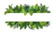 Tropical leafs concept banner. Cartoon illustration of tropical leafs vector concept banner for web design
