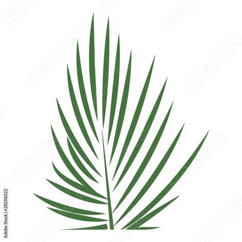 Areca palm leaf icon Wallpaper Mural