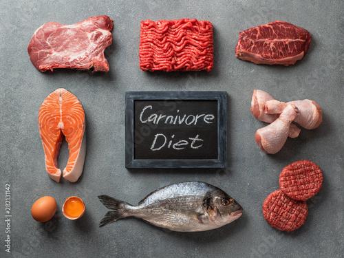 Carnivore diet concept Slika na platnu