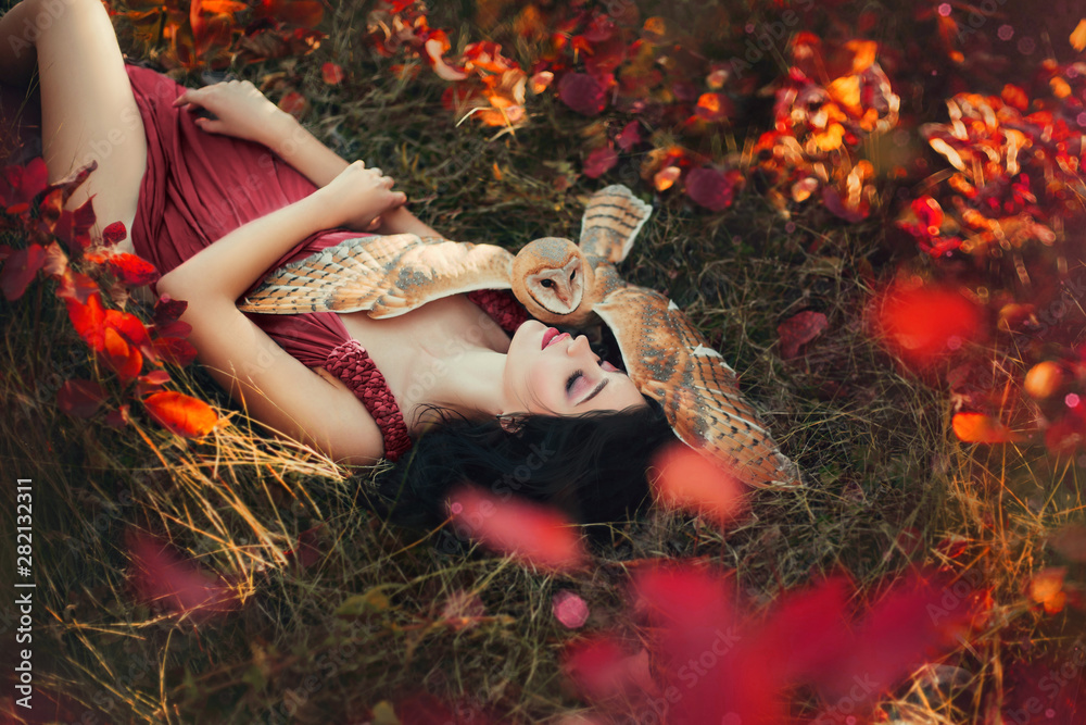 Fototapeta bright photo in burgundy shades, girl in dark dress color of Marsala, lady with dark hair lies on grass, fallen red and yellow leaves, barn owl spread its wings on sleeping fairy and protects sleep