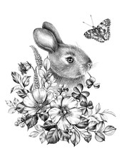 Little Hare With Wildflowers And Butterfly