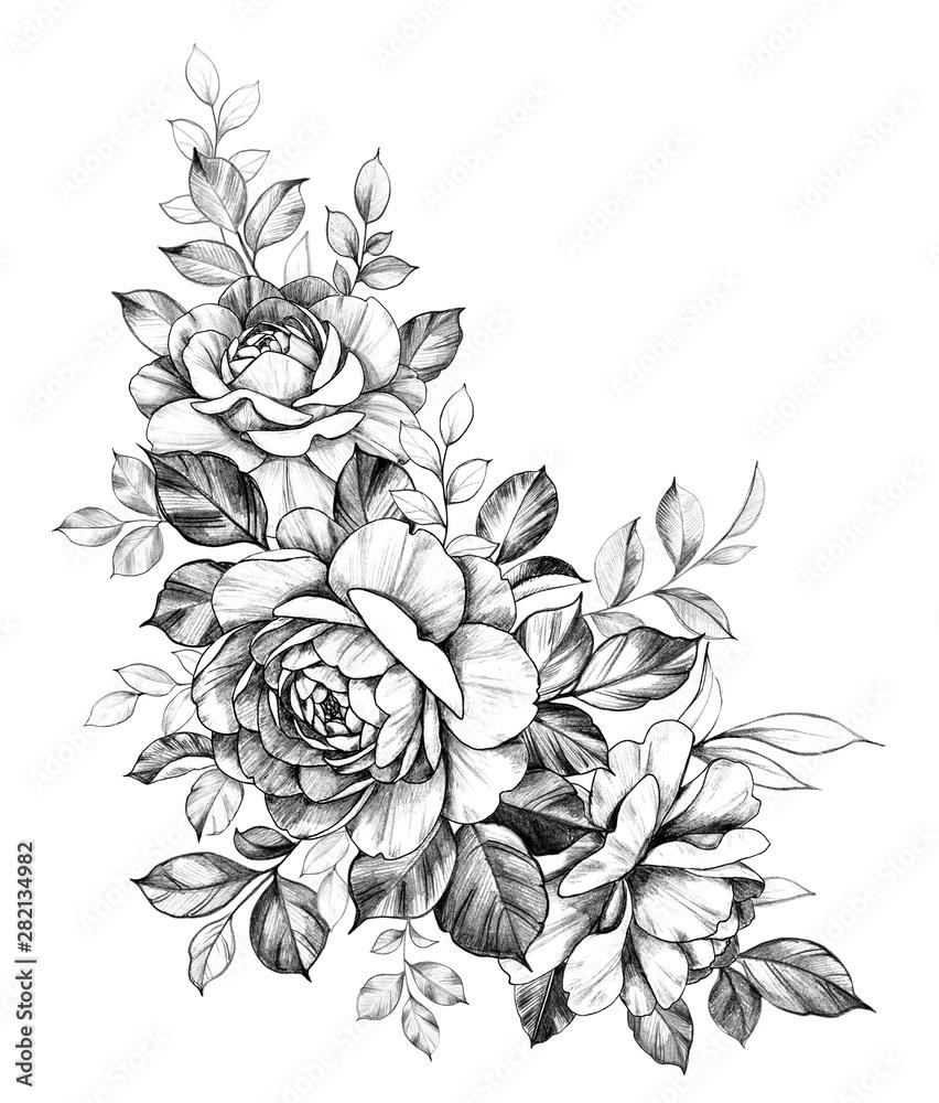 Fototapeta Hand Drawn Rose Flowers Composition
