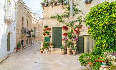 Fototapeta na wymiar Scenic sight in Monopoli, Bari Province, Puglia (Apulia), southern Italy.