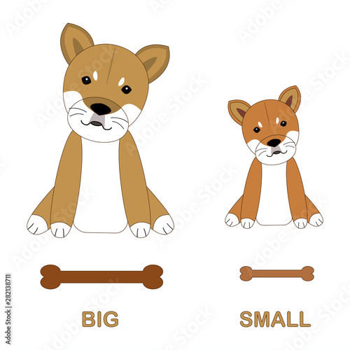 Cartoon characters of Shiba dogs Canvas Print