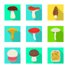 Vector Illustration Of Raw And Summer Sign. Set Of Raw And Ingredient Vector Icon For Stock.