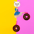 canvas print picture - Funny Kitty on donuts.  Flat lay art. Donuts lover concept