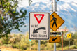 canvas print picture - Yield Here To Pedestrians sign against trees and mountain viewed on a sunny day