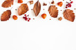 Leinwandbild Motiv Autumn composition. Dried leaves, flowers, rowan berries on white background. Autumn, fall, thanksgiving day concept. Flat lay, top view, copy space