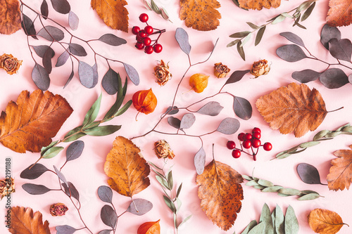 Autumn composition. Pattern made of dried leaves, flowers on pink background. Autumn, fall concept. Flat lay, top view, copy space - 282191188