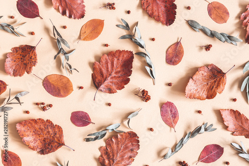 Poster Floral Autumn composition. Pattern made of dried leaves, flowers, acorns on beige background. Autumn, fall concept. Flat lay, top view