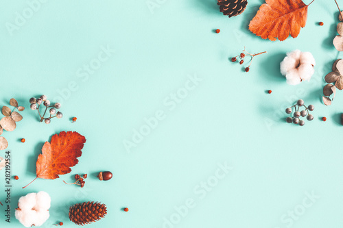 Autumn composition. Dried leaves, cotton flowers on pastel blue background. Autumn, fall, winter concept. Flat lay, top view, copy space