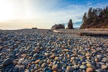 Pebbles On Ruby Beach, Olympic National Park