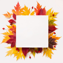 Bright Composition Of Fallen Autumn Leaves With Blank Space