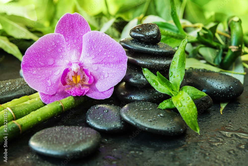 Fototapety, obrazy: Spa concept with zen stones, orchid flower and bamboo