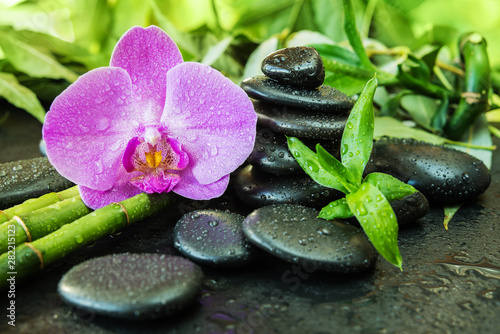 Autocollant pour porte Orchidée Spa concept with zen stones, orchid flower and bamboo