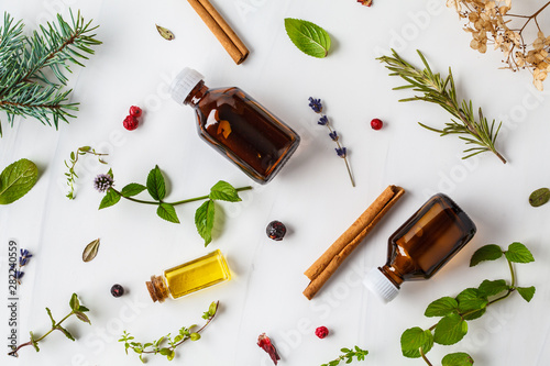 Fototapeta Ingredients for essential oil. Different herbs and bottles of essential oil, white background, flatlay. obraz