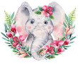 A poster with a baby elephant. Watercolor cartoon elephant tropical animal illustration. Jungle exotic summer print.