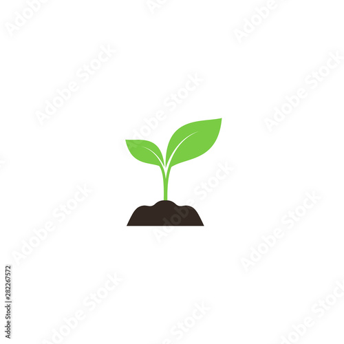 Fényképezés Young sprout in soil colorful vector icon