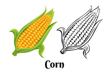 Ripe Yellow Corn With Green Leaves Color Illustration And Black And White Outline Icon. Fresh Vegetable In Cartoon Simple Flat Style.