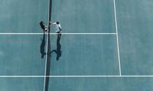 Professional Tennis Players Ha...