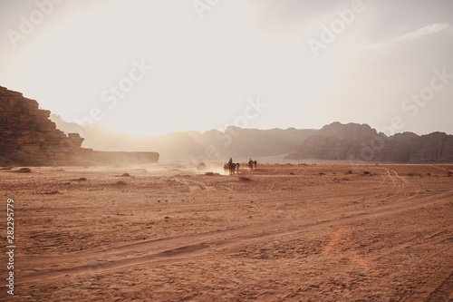 Caravan of camels walking in the Wadi Rum desert in Jordan on a sunny day Fototapet