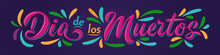 Dia De Los Muertos Lettering Sign. Inscription Mexican Day Of The Dead With Colorful Flourish Elements On Dark Background. Vector Illustration For Greeting Cards, Poster, Party Flyer, Invitations